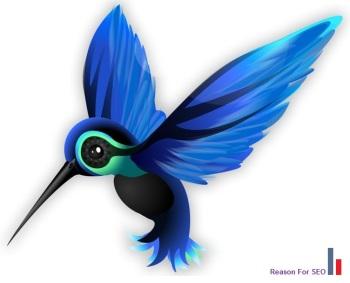 hummingbird1-700x600